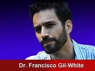 francisco_gil_white_2_1030x438