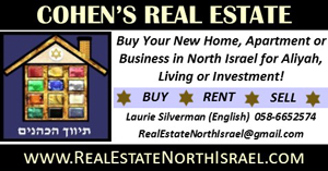 cohen_real_estate_north_laurie_300