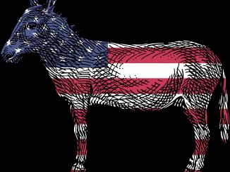 donkey-1445494_1280