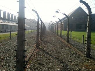 holocaust-concentration-camp-528969_1920