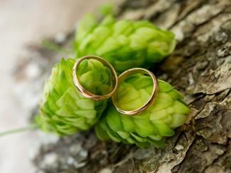 rings-1786276_1280