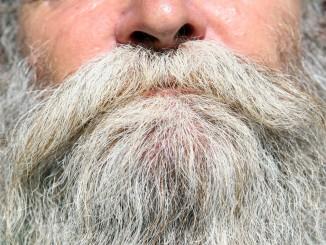 chin-beard-1239335_1920