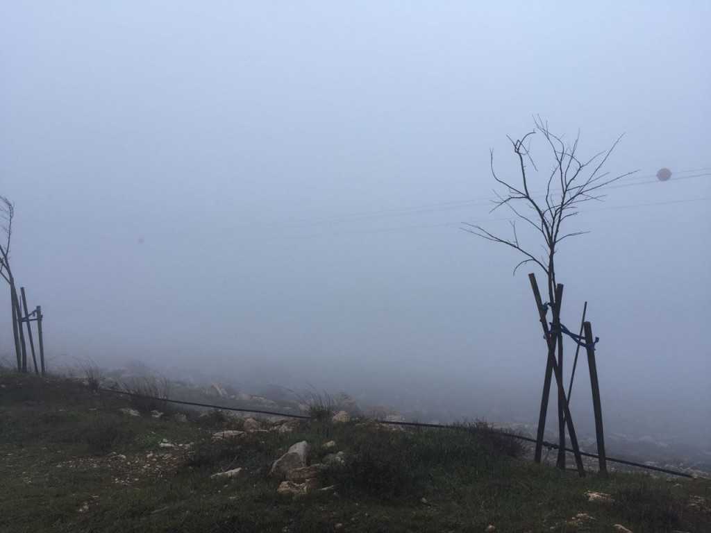 Heavy fog engulfs Amona, making it impossible to see where tractors and forces are coming from.