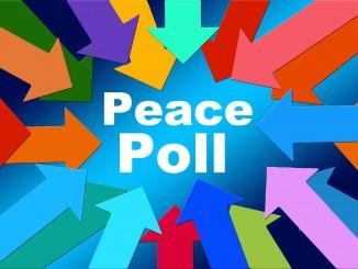 peace poll-